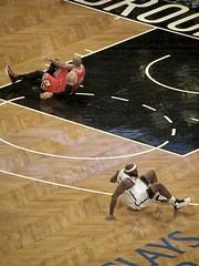 Carlos Boozer, Chicago Bulls, Reggie Evans, Brooklyn Nets