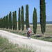 Me Among the Cyprus in Tuscany by Len Radin