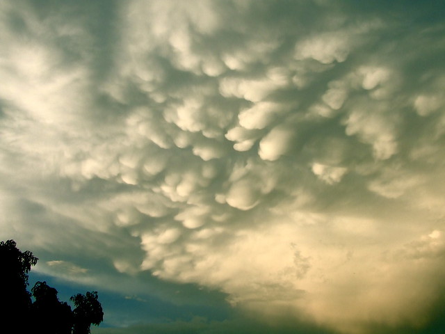 Mammatus clouds after Friday's afternoon deluge.