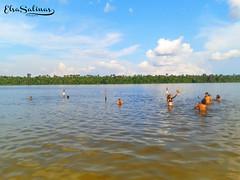 Quistococha - Iquitos - Perú