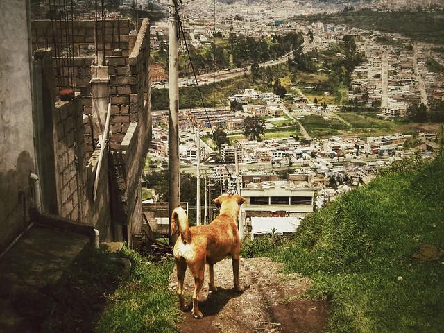 Esmeralda above Quito