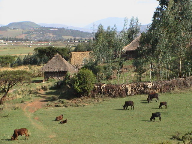 The-coutryside-in-Ethiopia