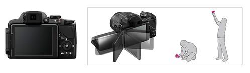 Nikon P520 -- Articulating LCD