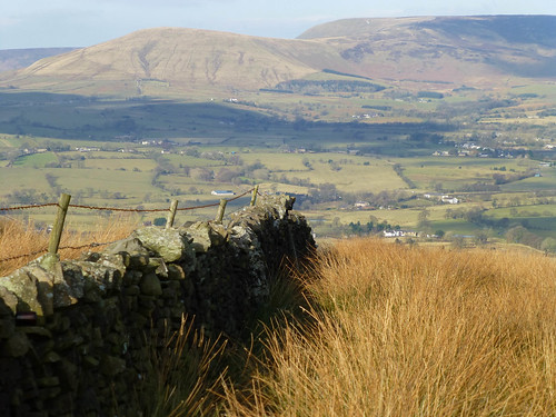 winter grass sunshine fence landscape countryside lancashire farms february friday drystonewall chipping hff ribblevalley forestofbowland bowlandfells parlickhill blinkagain