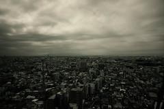 雲天の眺望