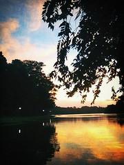 sunset at MacRitchie Nature Trail