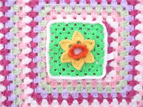'Daffodil Challenge'