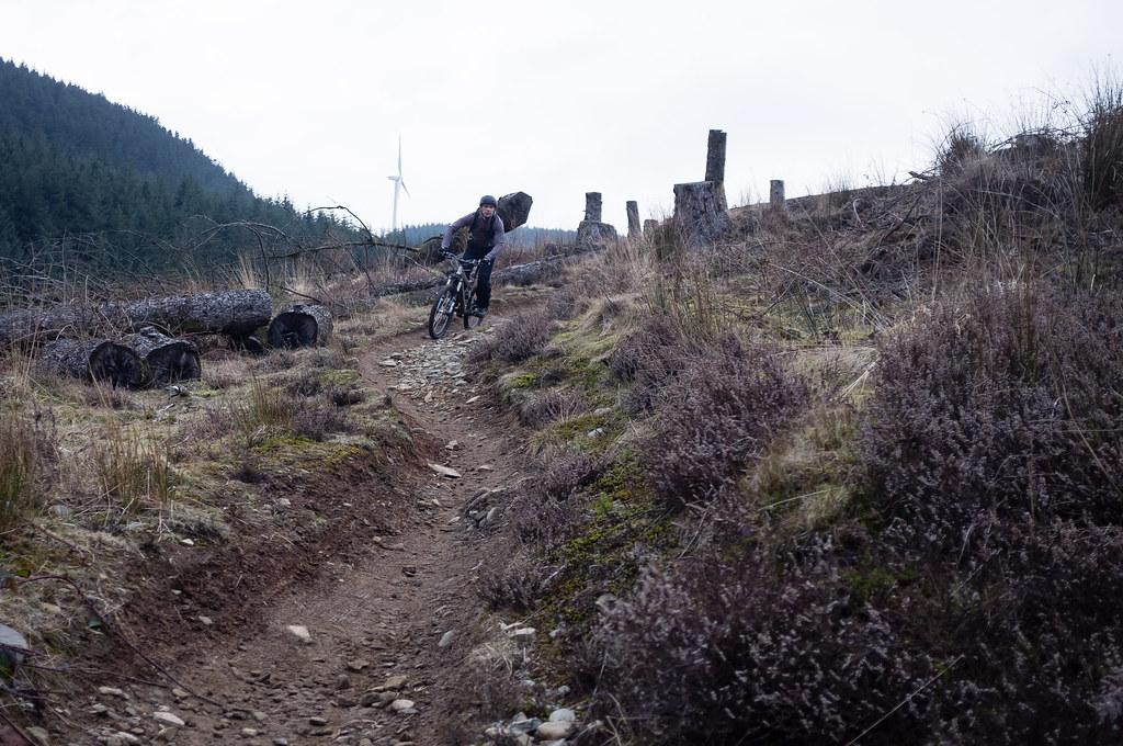 Trail Gav