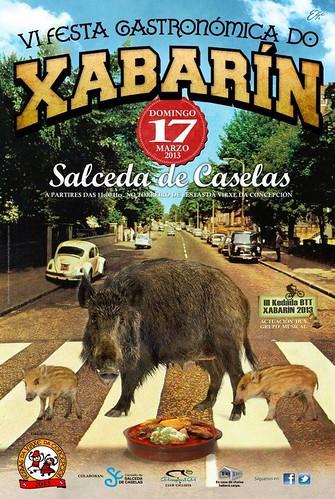 Salceda de Caselas 2013 - VI Festa do Xabarín - cartel
