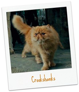 Crookshanks