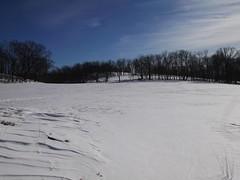 日, 2013-02-10 14:55 - Rockfeller Park Preserve