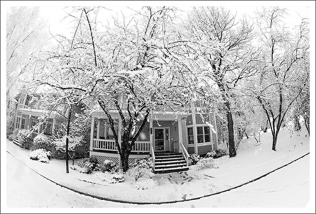 Spring Snow 2013-03-24 5