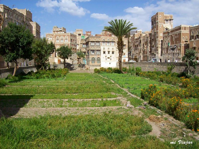 Jardin, Sanaa, Yemen