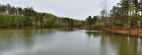 panorama tn linux 1740mm 50d fairviewtennessee