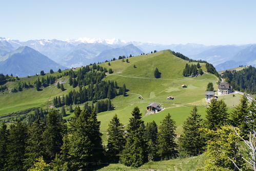 alpes suiza paisaje bosques