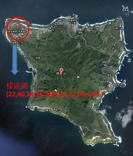 綠島燈塔路段之陸蟹生態廊道研究樣區 (圖片提供:林修宇)