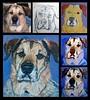 Simon's portrait progress montage