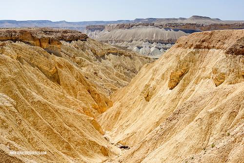 Israel - Negev Desert - Midreshet Ben Gurion 04