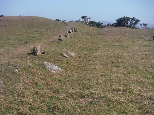 Anglo-Saxon Boundary Markers, Bronkham Hill