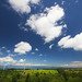 Nunohiki-yama Plateau