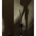 Dark Corner by j.p. howley