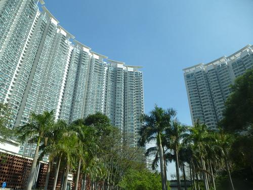 HK13-Lantau1-Route (10)
