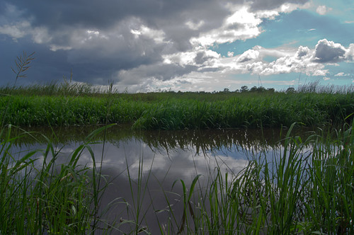 blue sky storm reflection sc water beautiful grass clouds river landscape sony ashley southcarolina stormy historic e karl grasses marsh braun tidal ashleyriver lowcountry a55 marshgrass sonya55 ekarlbraunphotography