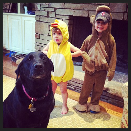 They just came down the stairs dressed as a monkey and a duck. #neveradullmoment