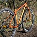 Salsa El Mariachi Singlespeed by placid casual