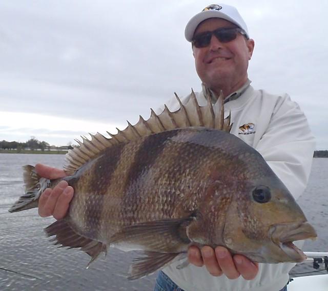 8494856483 f129fd6faf for Sheepshead bay fishing