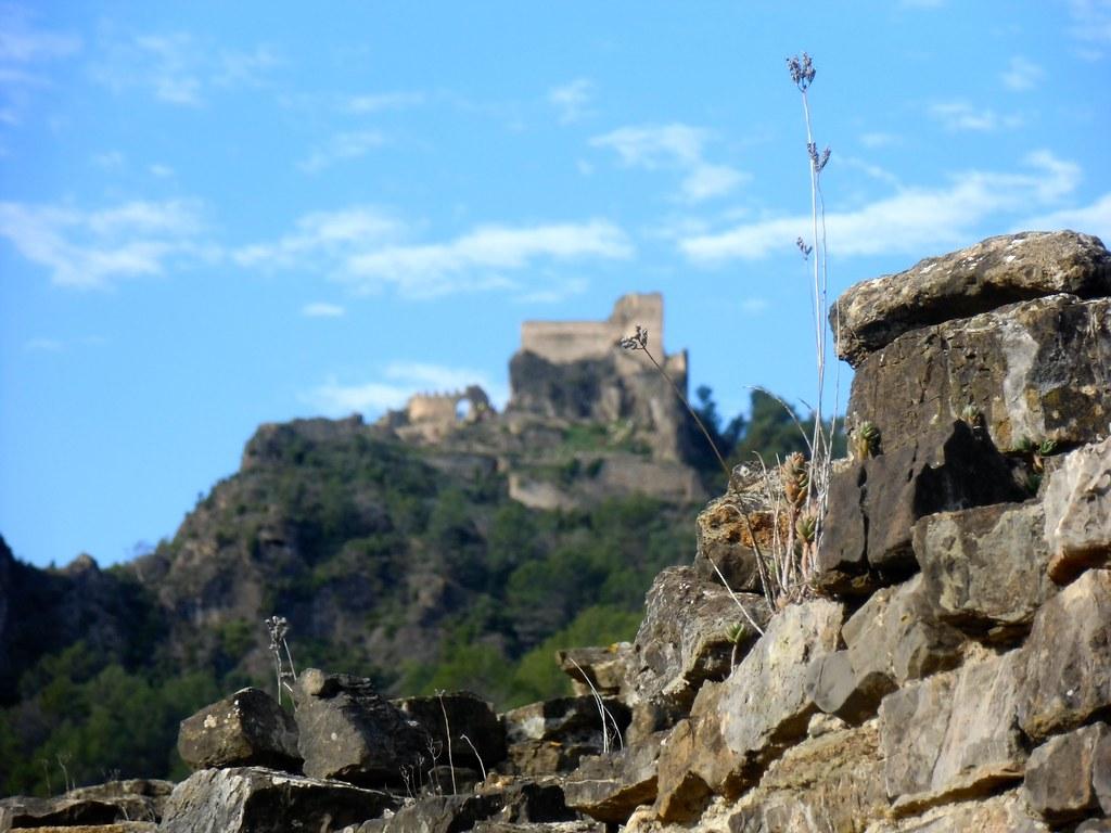 Castell de Mauz