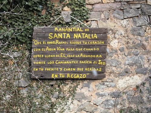 San Adrián, 2013