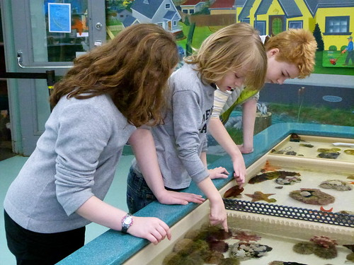 Kids At The Touch Tank