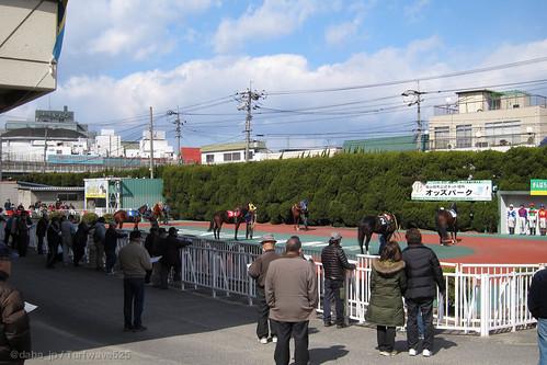 20130223 福山競馬場 / Fukuyama R.C.