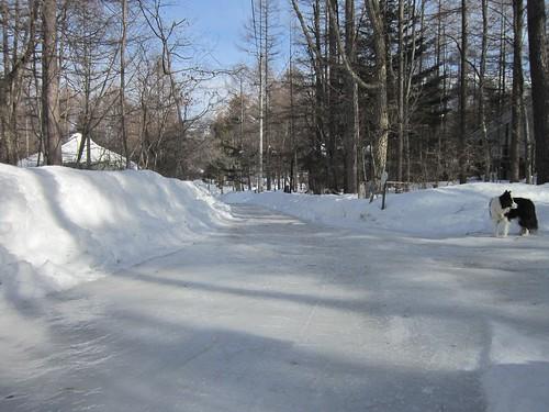 スケートリンク状態の道路 2013年3月3日8:53 by Poran111