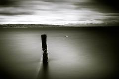 A pole stuck into the sea