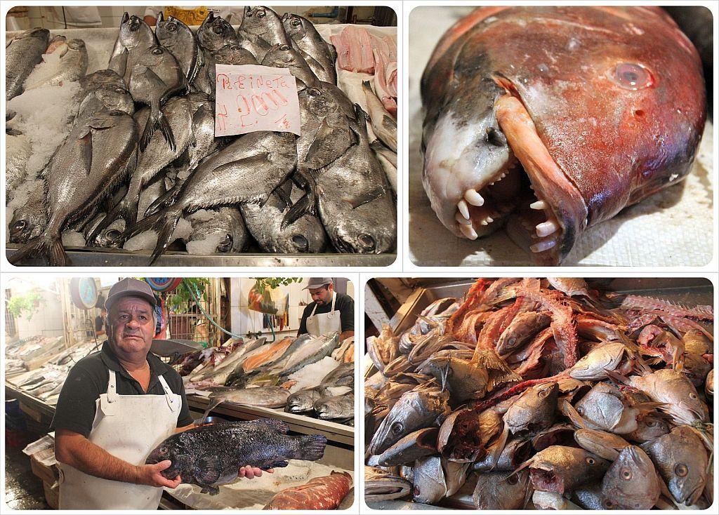 Santiago de Chile fish market mercado central