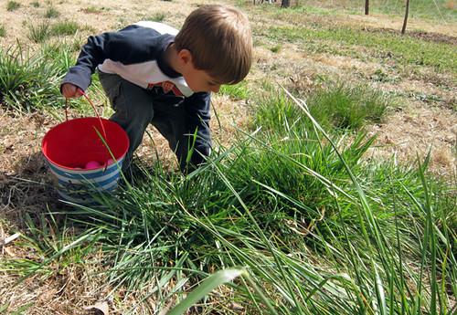 big weedy grass clumps!