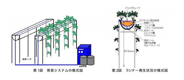 栃木農業試験場発行「クリプトモスを用いた 環境にやさしい いちごの養液栽培技術」図1、図2