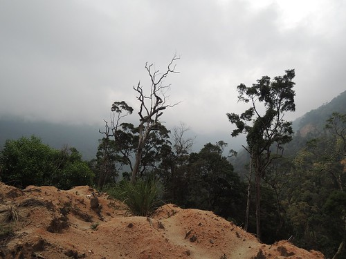 Von Dalat nach Nha Trang