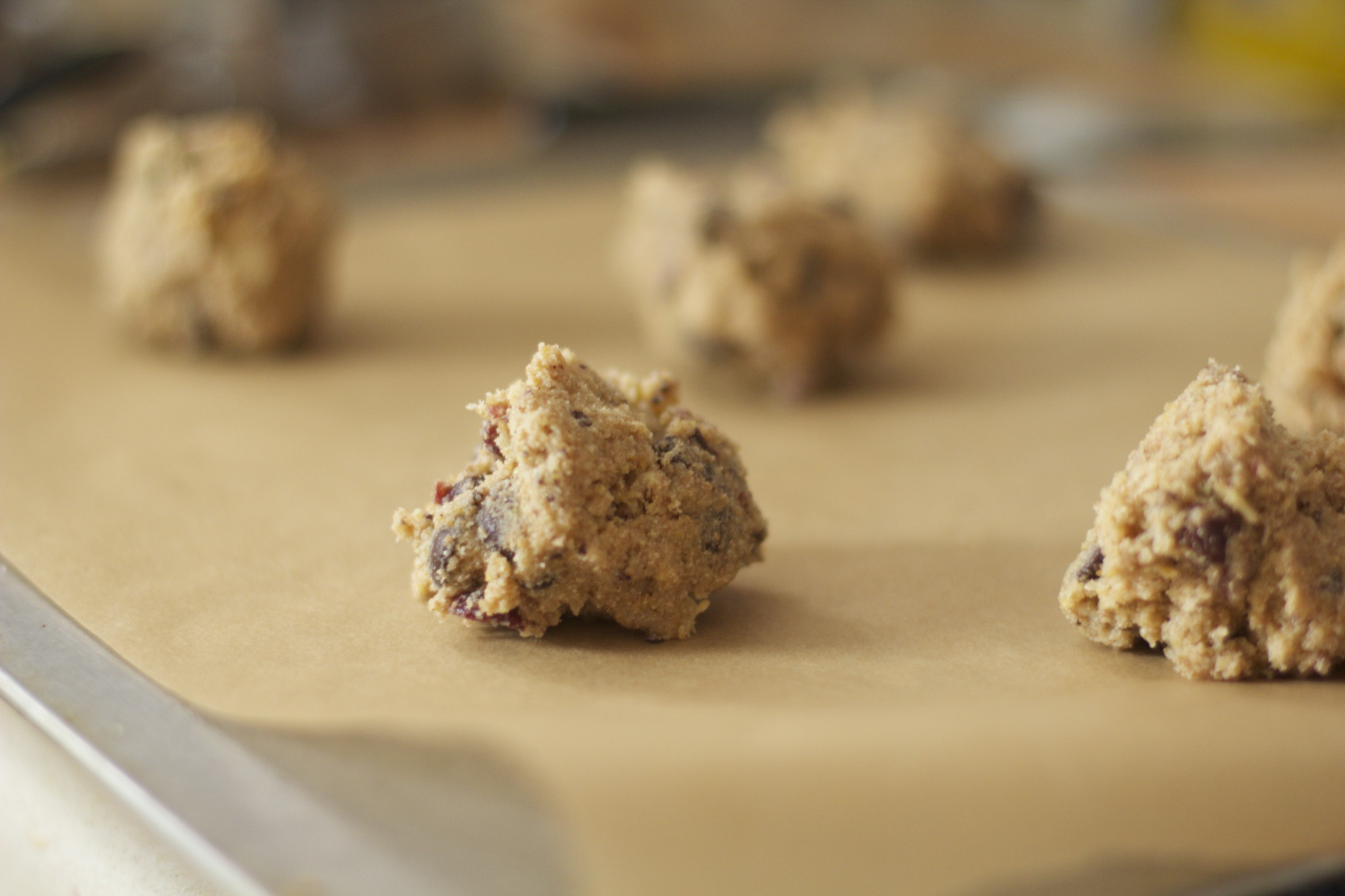 Chocolate Chip Walnut Cranberry Cookies