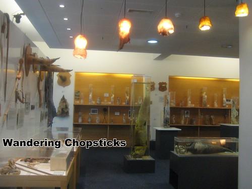 4 Icelandic Phallological Museum - Reykjavik - Iceland 10