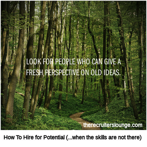 How To Hire for Potential (4 of 5)
