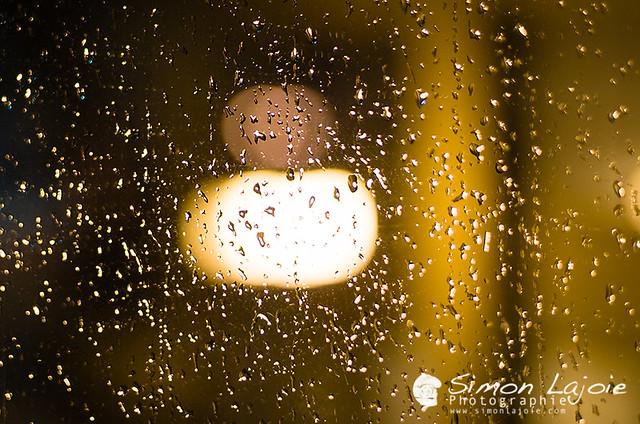 Perles de pluie – Pearls of rain