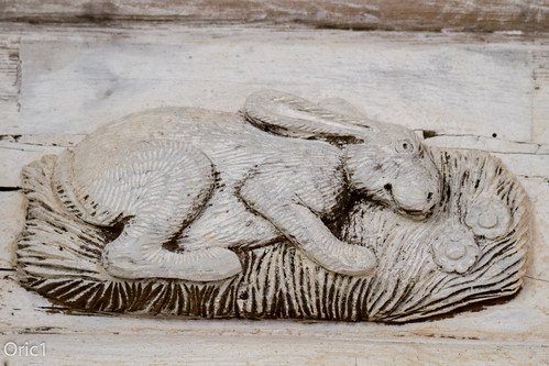 15th century la chapelle notredamedutertre canon chätelaudren eos france franceoric1 oric1 xvsiècle argoat armorique breizh bretagne brittany côtesdarmor lambrispeints 15thcentury lachapellenotredamedutertre religion religieux catholique église church dieu god lièvre lapin rabbit tourisme lambris peints bois wood