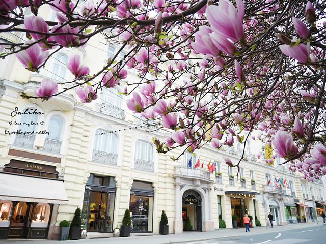 奧地利薩爾茲堡住宿推薦Hotel Bristol Salzburg (24)