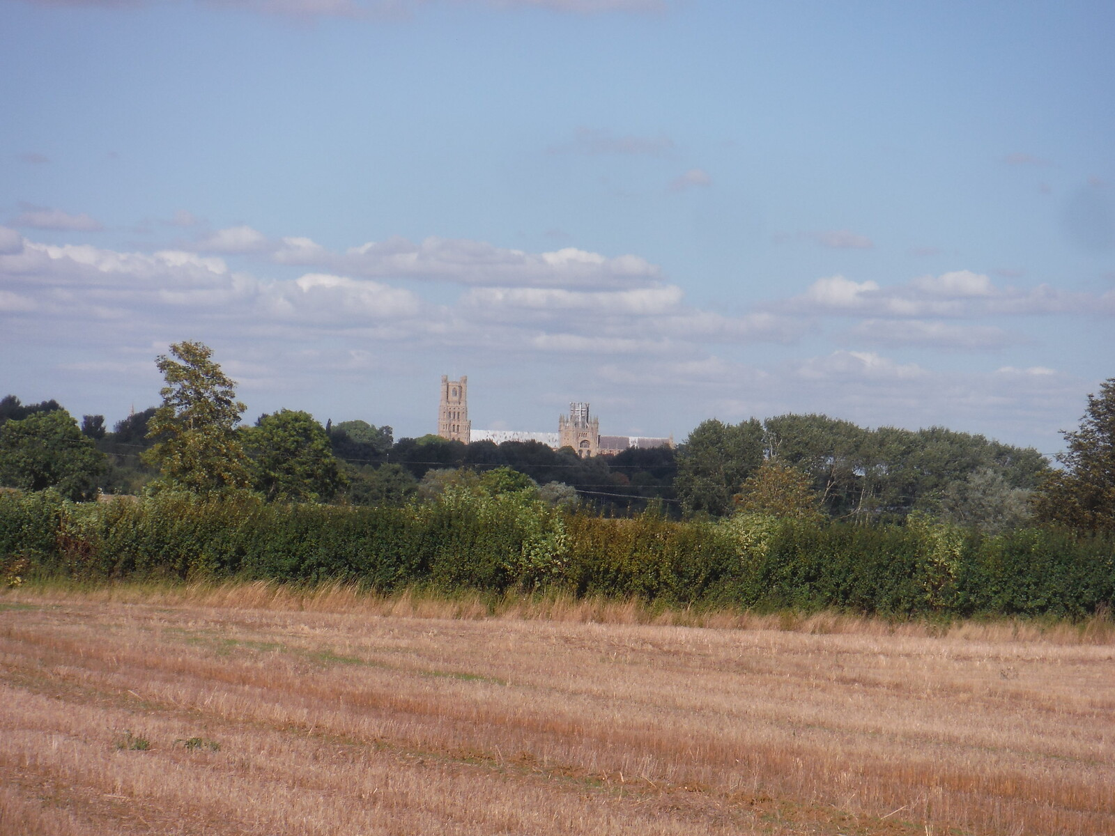 Ely Cathedral in the distance SWC Walk 118 Ely Circular