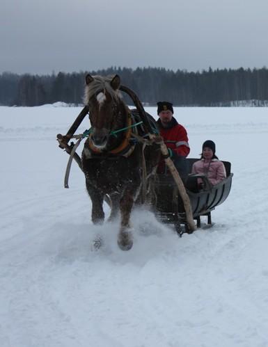 Trineos y nieve: muy finlandés