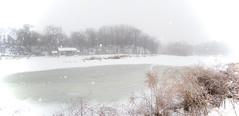 Grant Park Snowy Panorama