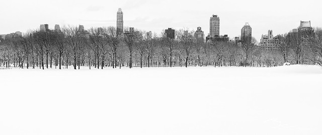 Sheep Meadow, Central Park - Explore #72
